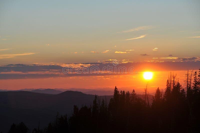 Solnedgång över träd Cedar Breaks Utah arkivbilder