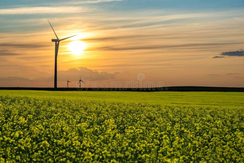 Solnedgång över vindturbiner på prärierna i Saskatchewan, Kanada arkivbilder