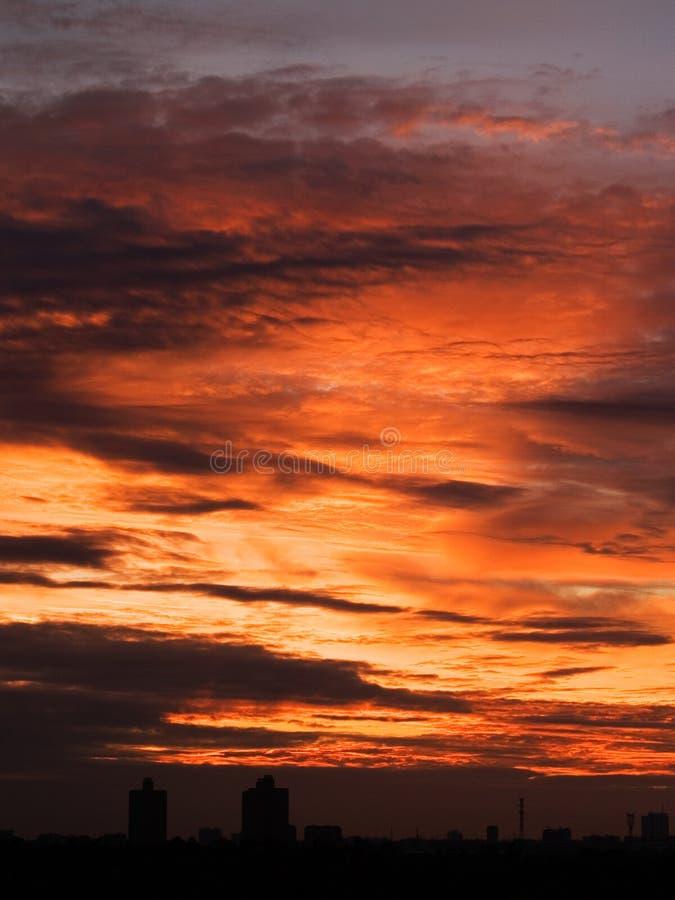 solnedgång 2 royaltyfri foto