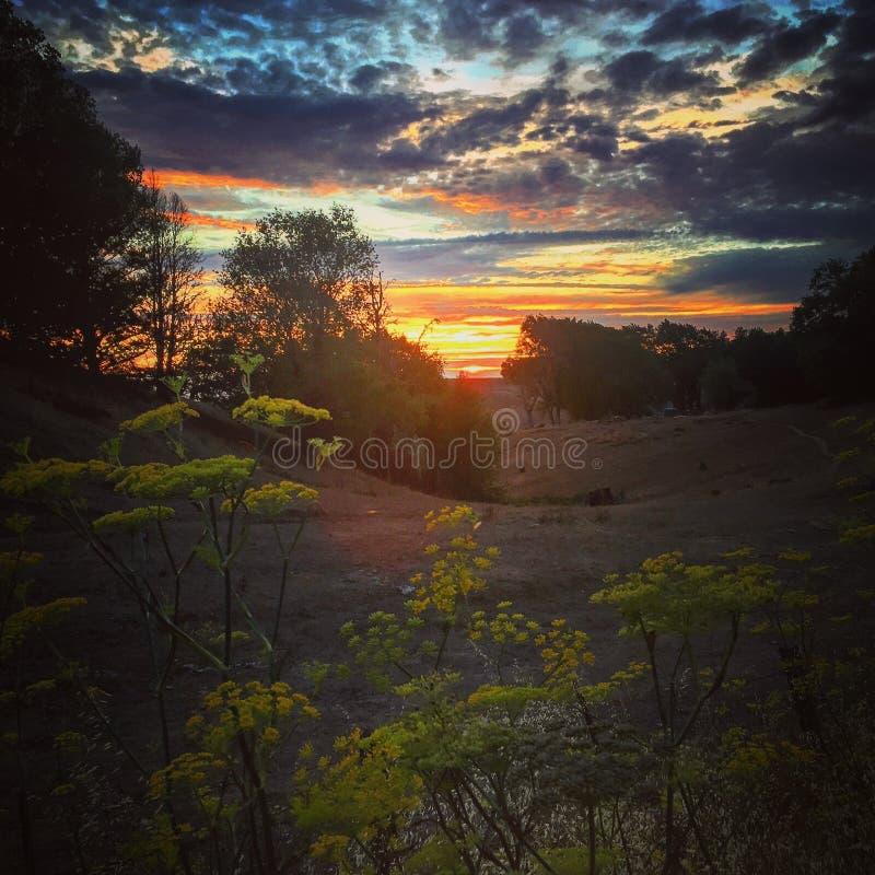 solnedgång 3 arkivfoton