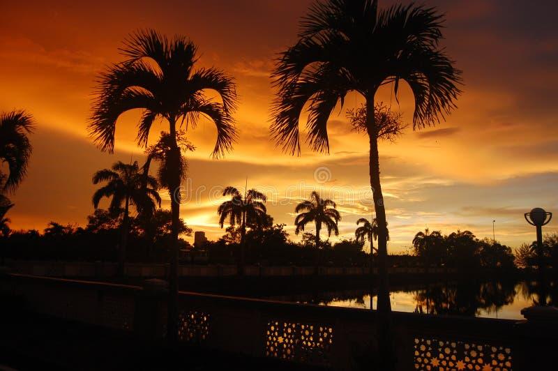 Solnedgång av brand över sjön och palmträd i den tropiska ön av Borneo i Kota Kinabalu, Malaysia Spektakulärt Co arkivbild