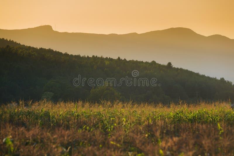 Solnedgång bak Mt. Mansfield i Stowe, VT, USA royaltyfria foton