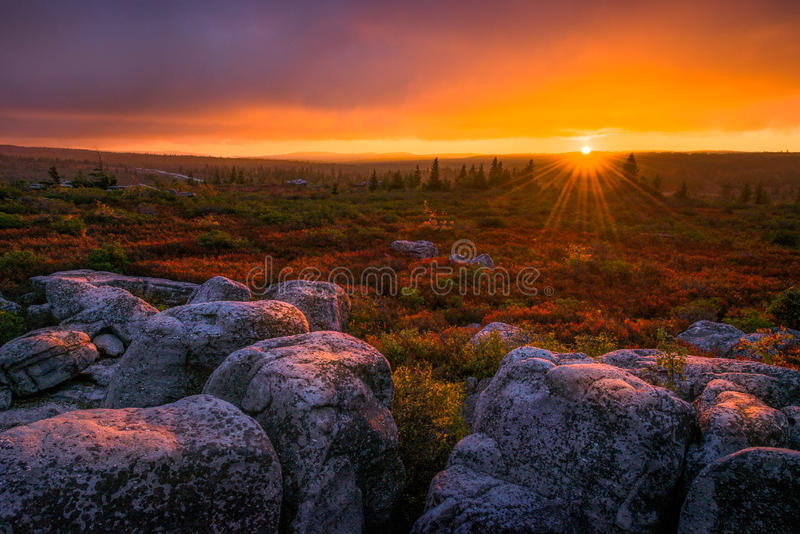 Solnedgång Dolly Sods, West Virginia royaltyfri fotografi