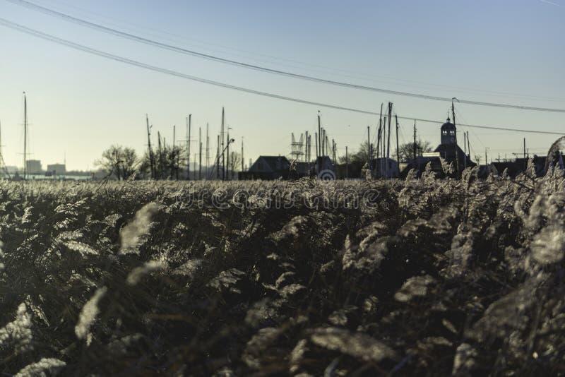 Solnedgång Durgerdam 2016, sikt över fälten royaltyfri fotografi