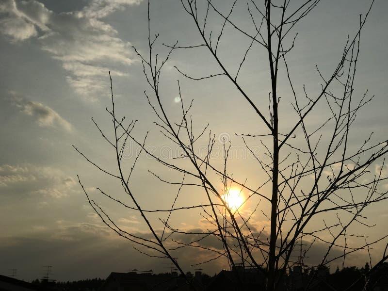 Solnedgång efter regn över staden fotografering för bildbyråer