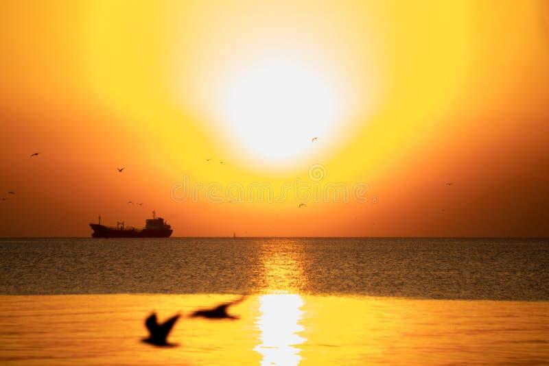 Solnedgång- eller aftontid med guld- himmel på havet eller havet med lastfartyg- och seagullfågelflyg på smällbajset, Samutprakan royaltyfri fotografi