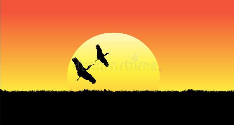Solnedgång fåglar som flyger solnedgång royaltyfri illustrationer