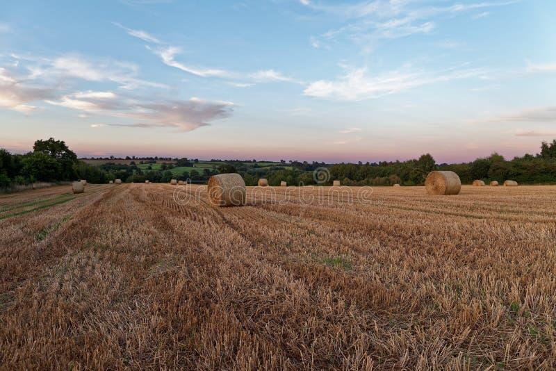 Solnedgång för sen sommar över fält arkivbilder
