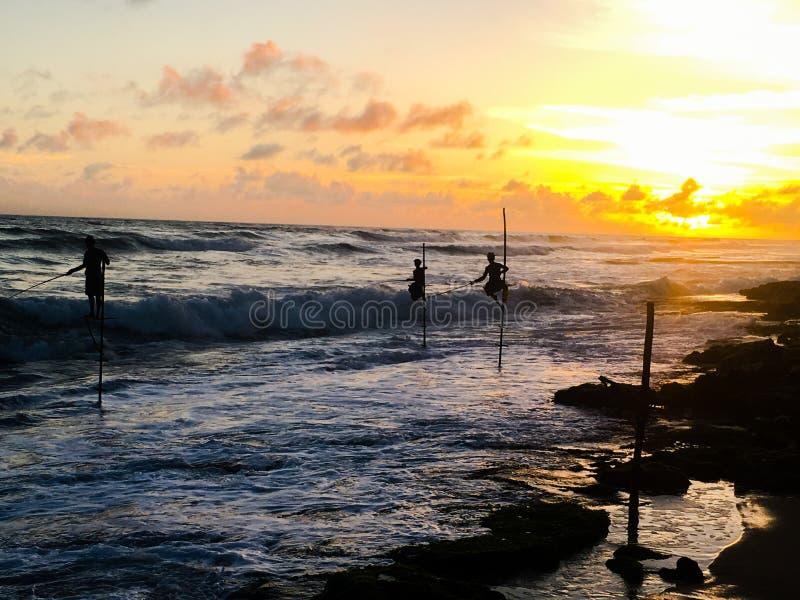 Solnedgång för Sri Lanka fiskarestyltor arkivbilder