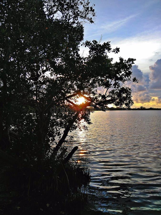 Solnedgång från kajaklansering i Florida royaltyfria bilder