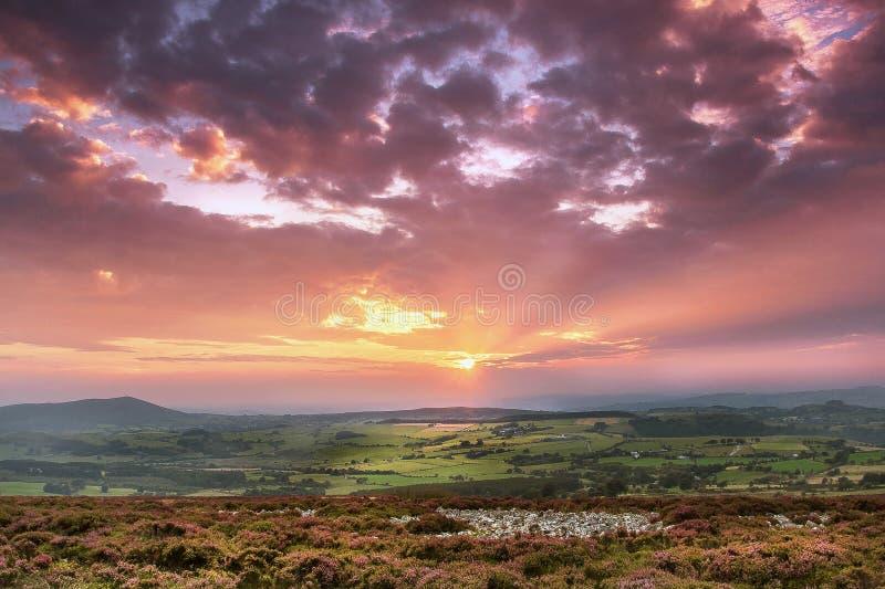 Solnedgång från Stiperstones Ridge till kedjakullen arkivbild
