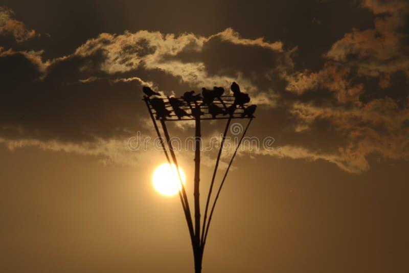 Solnedgång i österut arkivbilder