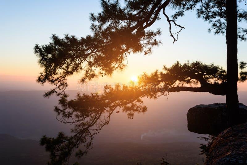Solnedgång i aftonen fotografering för bildbyråer