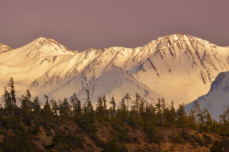 Solnedgång i berg - skönhet av naturen royaltyfri fotografi