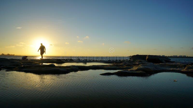 Solnedgång i botanikfjärd i Sydney royaltyfri fotografi