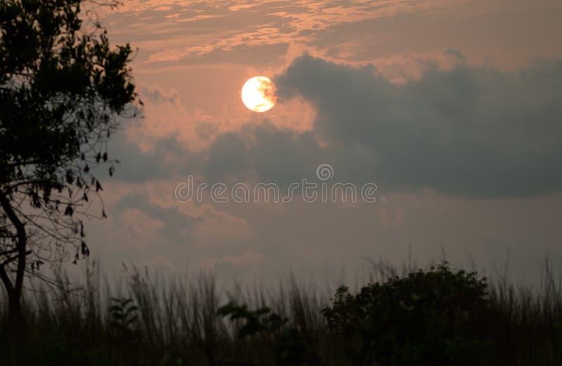 Solnedgång i den Conkouati Douli nationalparken, Kongo fotografering för bildbyråer