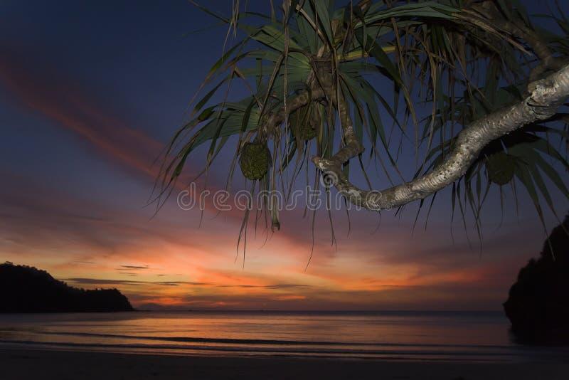 Solnedgång i den Kho Tarutao ön, Thailand royaltyfri fotografi