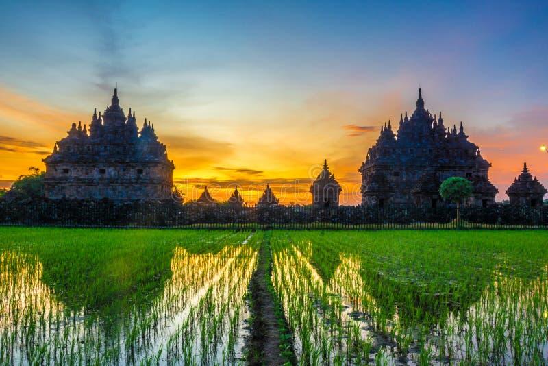 Solnedg?ng i den plaosan templet, indonesia arkivbild