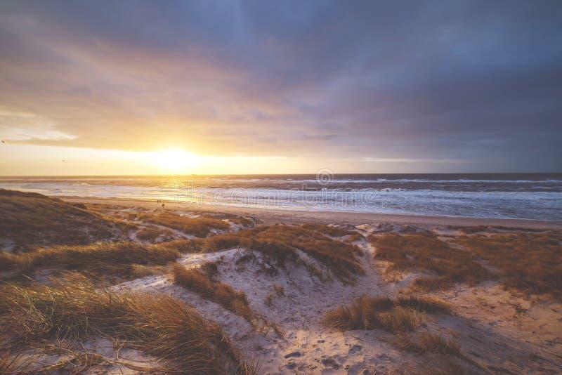 Solnedgång i dyerna i Danmark arkivbild