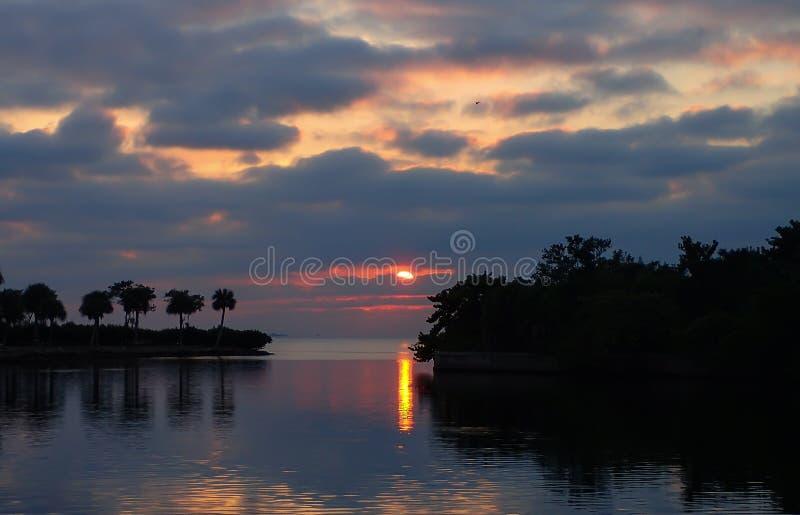 Solnedgång i en Florida hamn royaltyfri foto