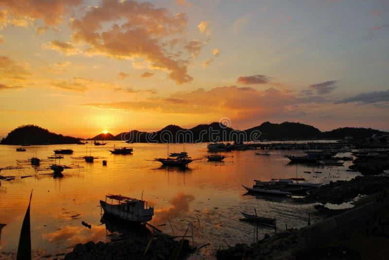 Solnedgång i hamnen royaltyfria bilder