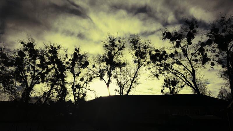 Solnedgång i Irpin fotografering för bildbyråer
