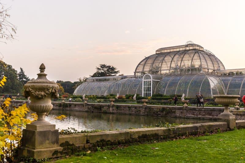 Solnedgång i Kew trädgårdar, London royaltyfri bild