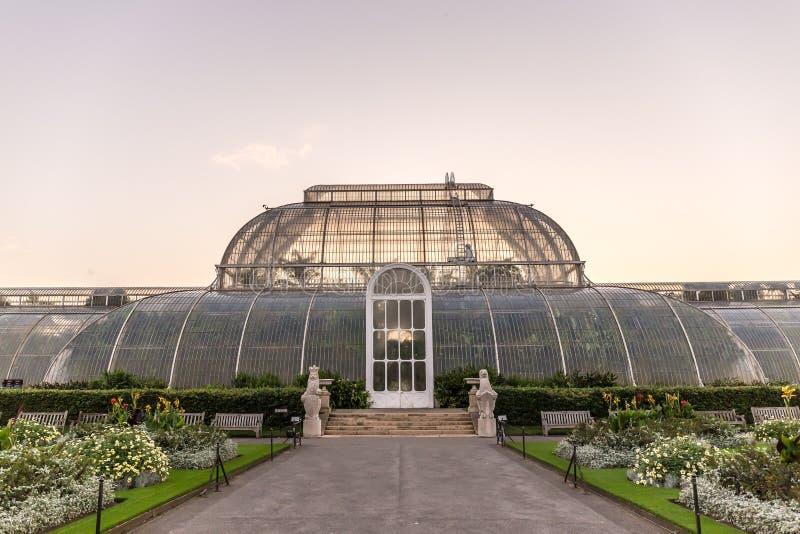 Solnedgång i Kew trädgårdar, London royaltyfri foto