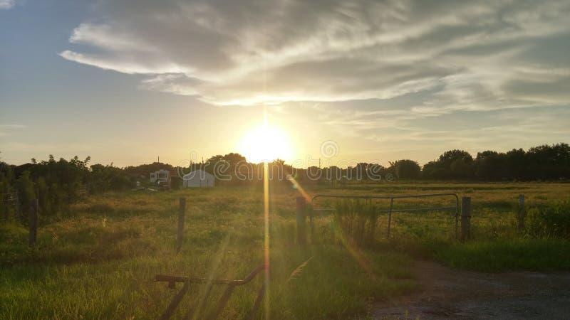Solnedgång i lantgården fotografering för bildbyråer