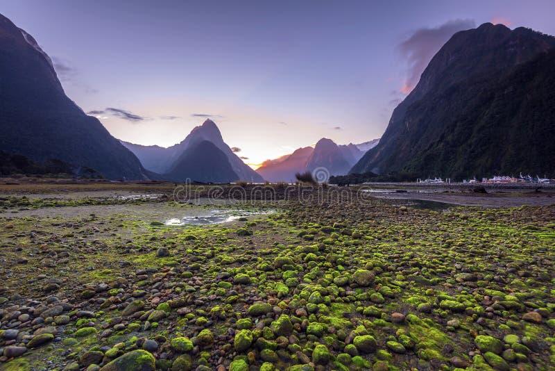 Solnedgång i Milford Sound, södra ö, Nya Zeeland royaltyfri fotografi