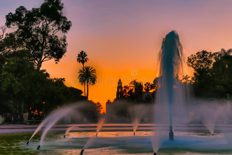Solnedgång i parkera royaltyfria bilder