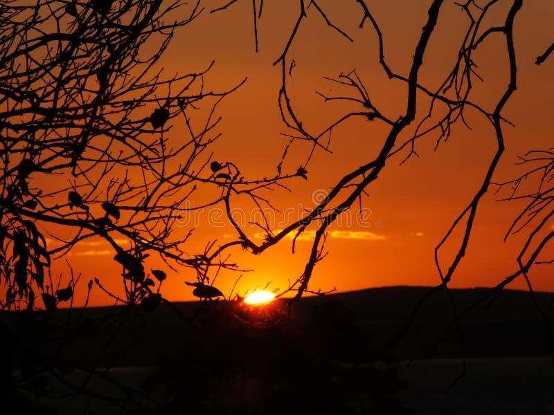 Solnedgång i Porto Alegre, Brasilien fotografering för bildbyråer