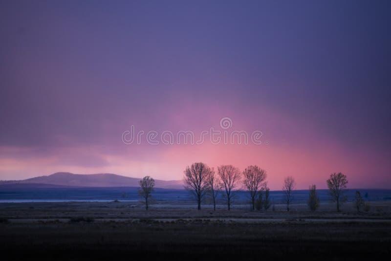 Solnedgång i sädes- fält royaltyfri bild
