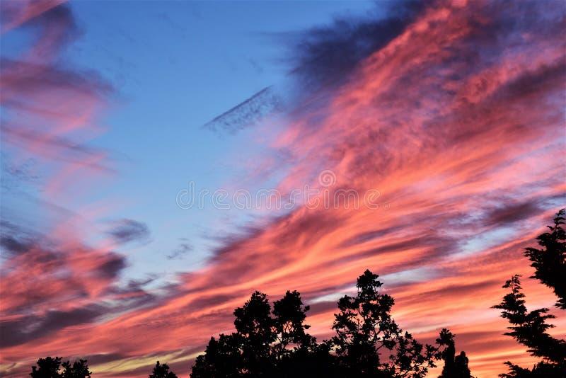 Solnedgång i södra London arkivfoto
