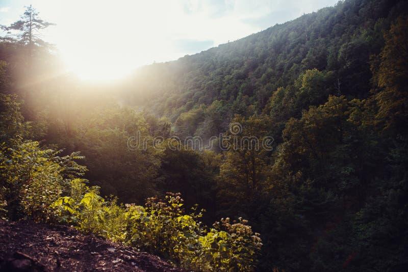 Solnedgång i scenisk bergskog på höstsäsongen arkivfoton