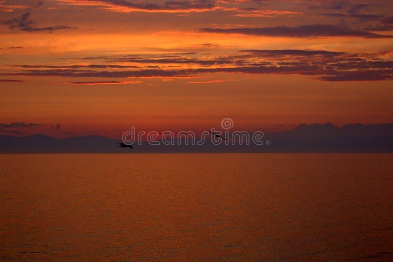 Solnedgång i system av den röda dvärgen royaltyfria foton