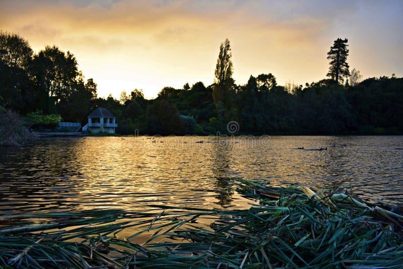Solnedgång i trädgårdarna av Hamilton royaltyfri bild