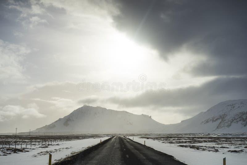 Solnedgång i vinter med isländska hästar arkivbild