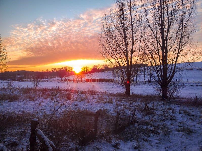 Solnedgång i vintern arkivbilder