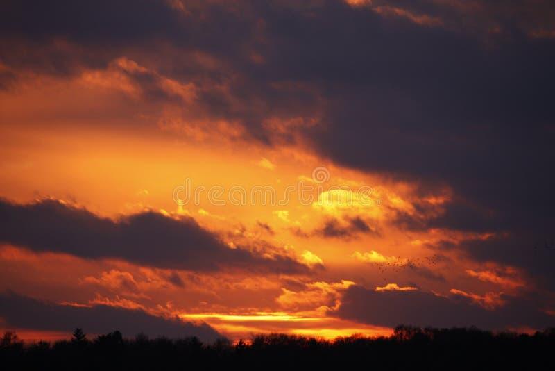 Solnedgång i Weert royaltyfria foton