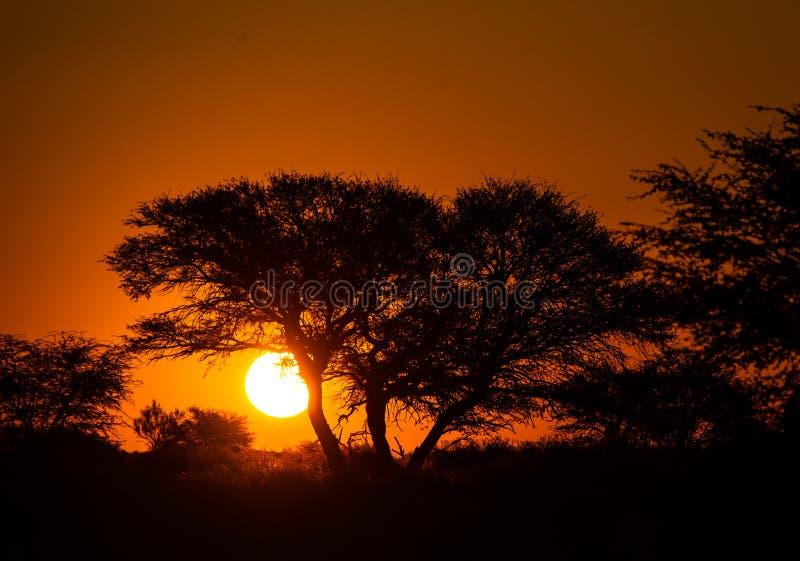 Solnedgång Kgalagai fotografering för bildbyråer