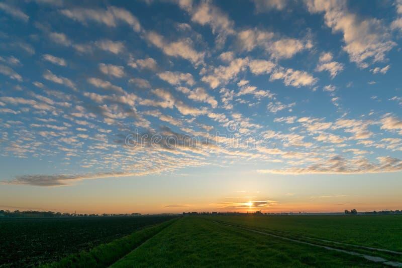 Solnedgång med altocumulusmoln över det holländska polderlandskapet nära gouda royaltyfri fotografi