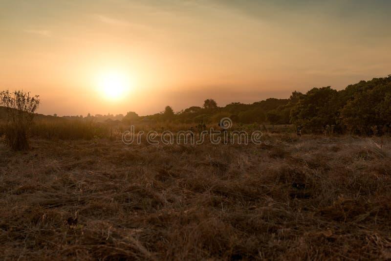 Solnedgång med den härliga ängen i bakgrunden i Banlung royaltyfri fotografi