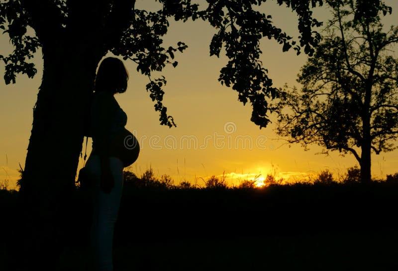 Solnedgång med en gravid kvinna royaltyfri bild