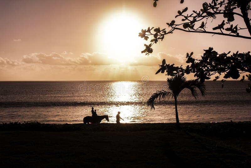 Solnedgång med hästrittkonturn royaltyfria bilder