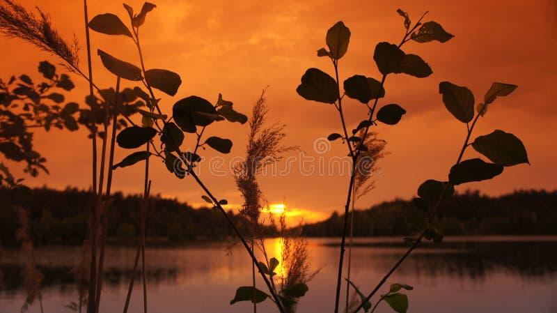 Solnedgång med sjön fotografering för bildbyråer