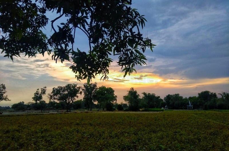 Solnedgång och himmel royaltyfri bild