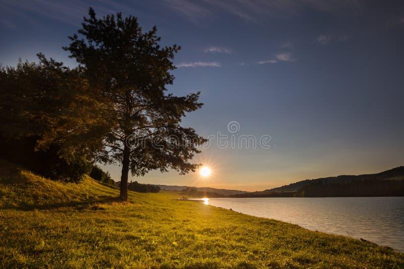 Solnedgång och träd vid kusten av vatten arkivfoto
