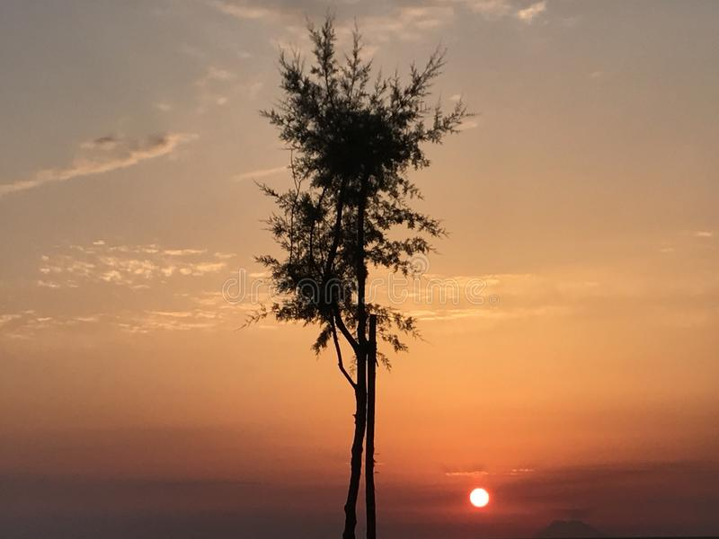 Solnedgång och vulkan royaltyfria foton