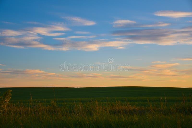 Solnedgång ovanför fältet i ryssbygd arkivbilder